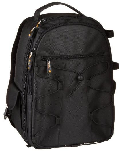The AmazonBasics Backpack for SLR Cameras and Accessories